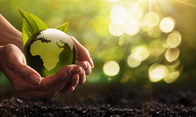Na vanguarda da sustentabilidade: SMC aposta em produtos ecologicamente corretos