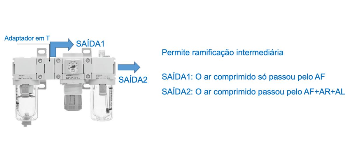 Ramificação intermediária   SMC